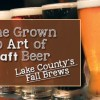 fall brews header