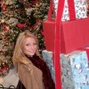 Gurnee Mills Holiday Shopping