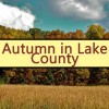 Fall in lake county