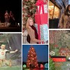 Holiday Guide Collage