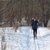Cross-country skiing at Ryerson Conservation Area in Riverwoods